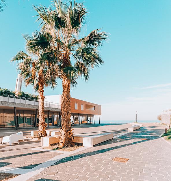 vista-mare-palma-le-dune-silvi-marina